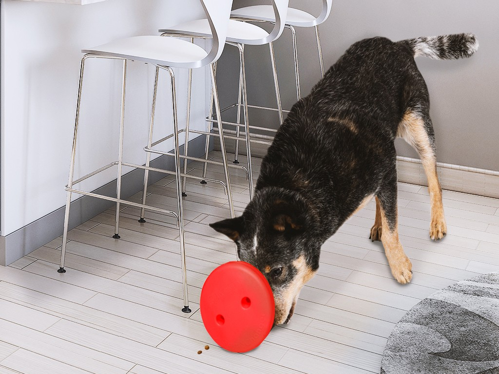 The Gamechanger Dog Toy